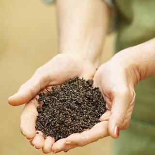 草むしりと根本的な品質改善