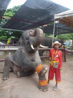 タイの象使いと象のよい関係
